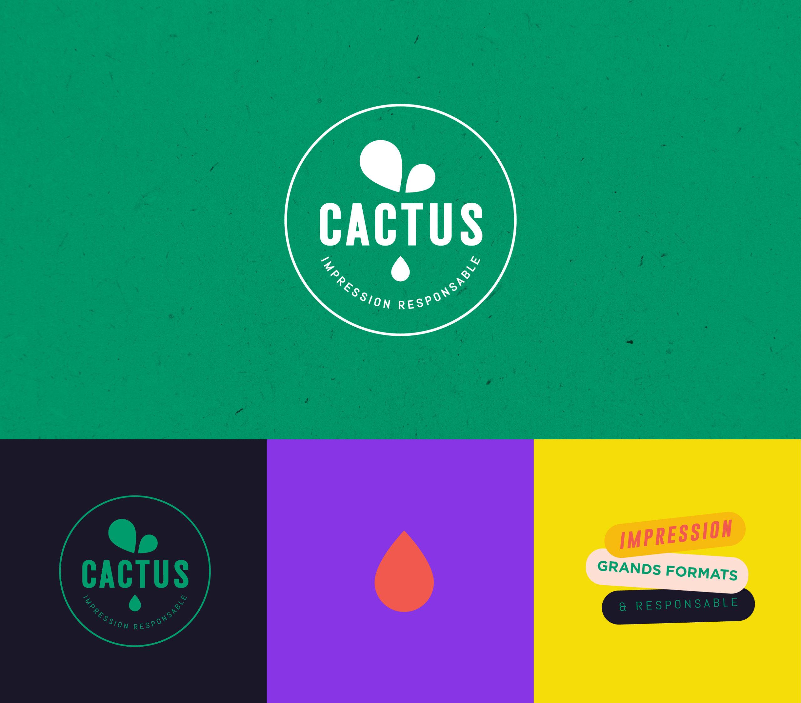CACTUS-DAIAM-1