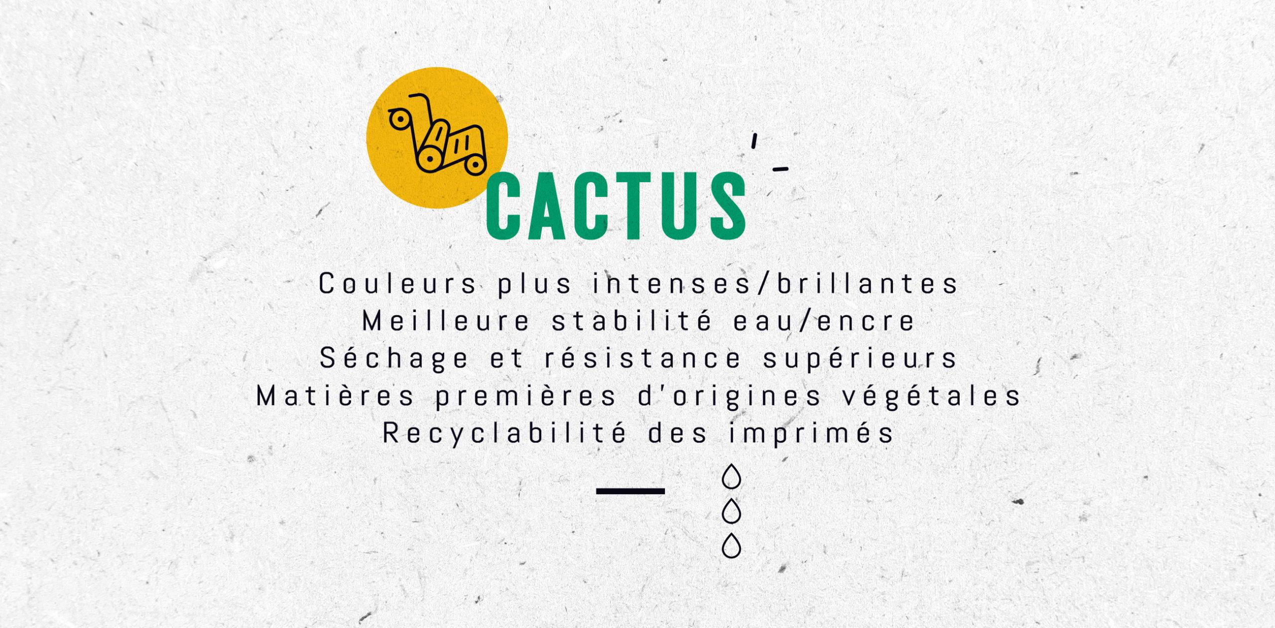 CACTUS-DAIAM-2