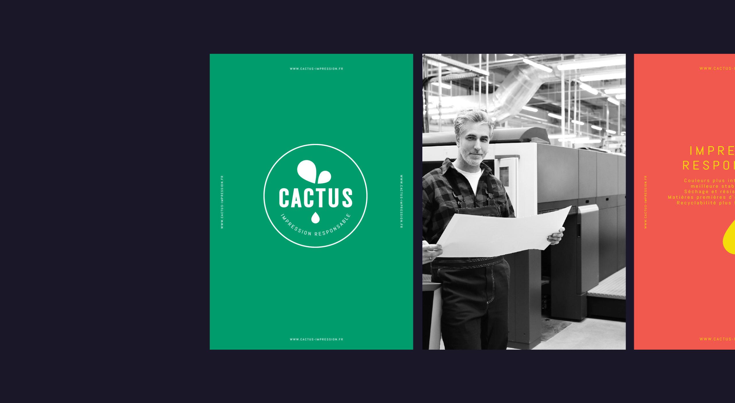 CACTUS-DAIAM-4